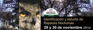 Curso de Identificación y estudio de Rapaces Nocturnas en Vivencia Dehesa