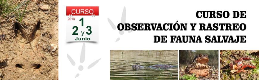Curso observación y rastreo de fauna salvaje