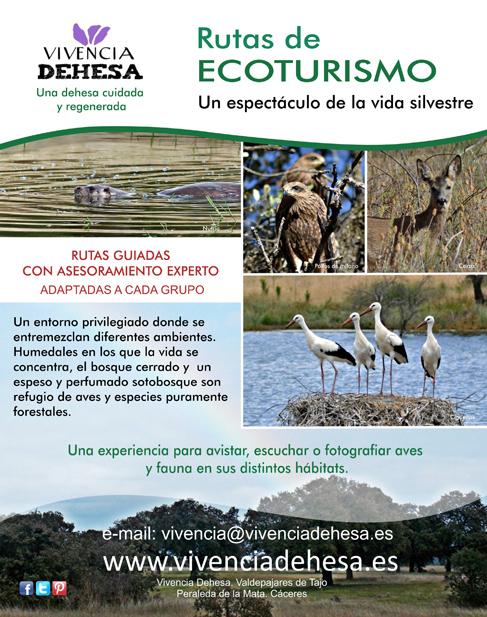 Cartel-Ecoturismo-web-617x484
