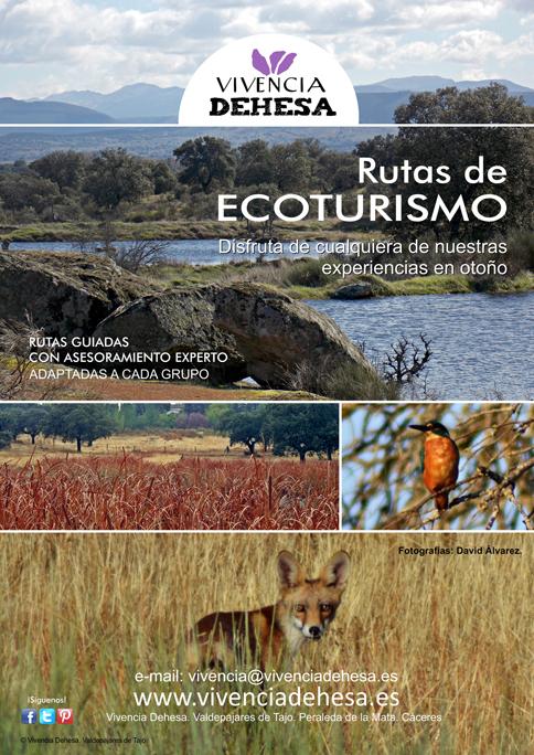 Vivencia Dehesa - Rutas ecoturísticas en Valdepajares de Tajo