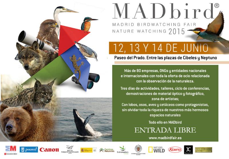 Banner Feria 11